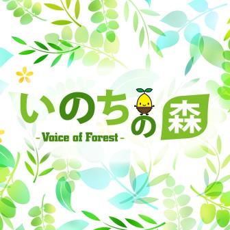 いのちの森 voice of forest